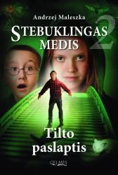 Tilto_paslaptis_Pirmas_virselisCMYK